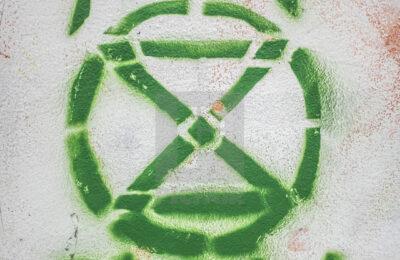 Towards an Ecosocialist Rebellion?